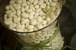 biela fazula