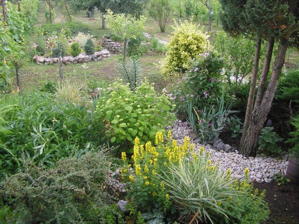 zahrada 02