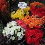 Flora Olomouc nesklamala