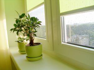 plastové okno