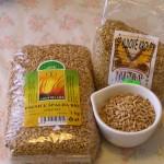 Špalda- liečivá a posilňujúca obilnina