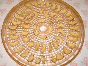 sušené hrušky