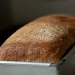Kváskový chlieb pre bezlepkovú diétu