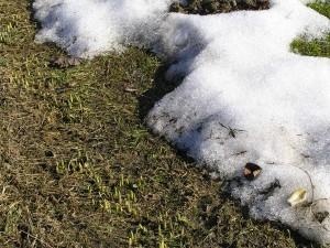 posledný sneh