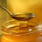Vynikajúce vlastnosti medu: Všeliek na choroby aj prostriedok na konzerváciu