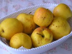 jabĺčka z minuloročnej úrody