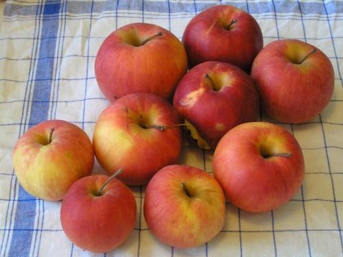 opravdu trvanlivé jablíčka