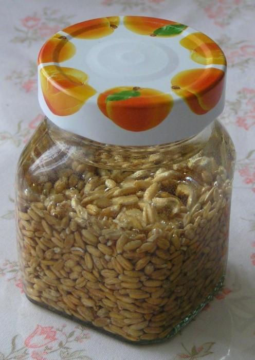 pšenice ve sklenici