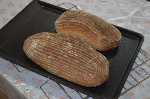 dva chleby