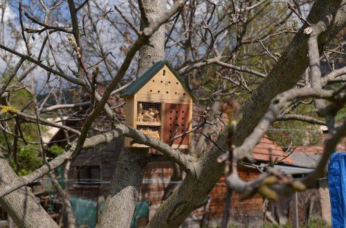 nový hotel pre hmyz