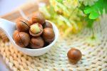 Kúzlo orechov