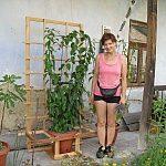 Prenosná treláž pre kiwi