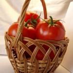 Balkónové paradajky III.