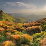 Fototapety – kúsok prírody u vás doma