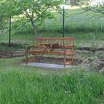 Máme novú lavičku pod orechom